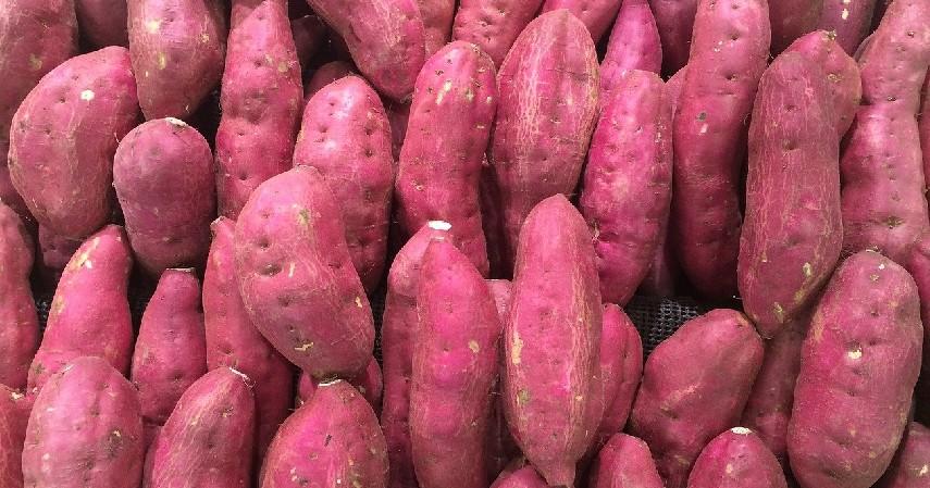 Ubi jalar - Makanan yang Baik Dikonsumsi untuk Penderita Aids