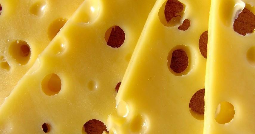 olahan susu - Makanan yang Baik Dikonsumsi untuk Penderita Aids