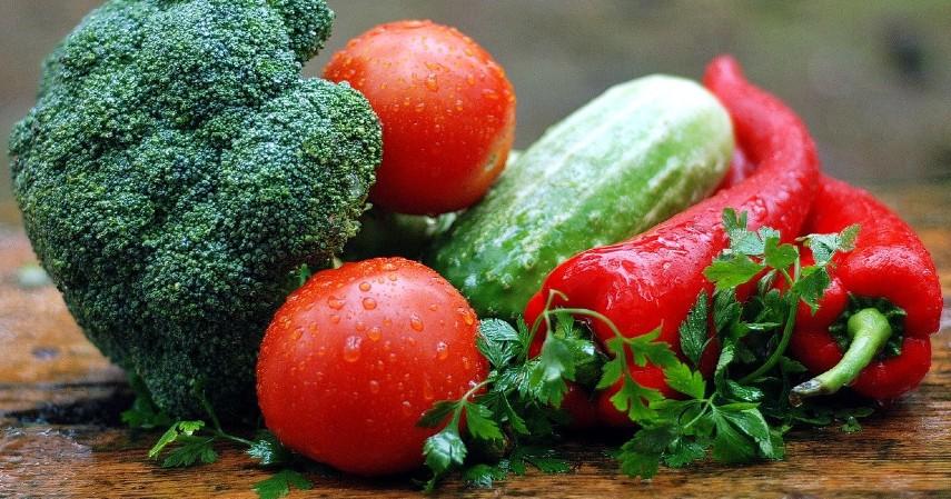 Diet Vegan - jenis Diet Aman, Sehat, dan Populer.jpg