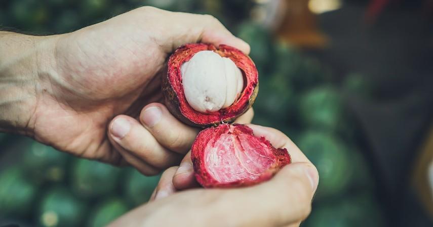 Bahan Alami Pewarna Kain - Kulit Manggis