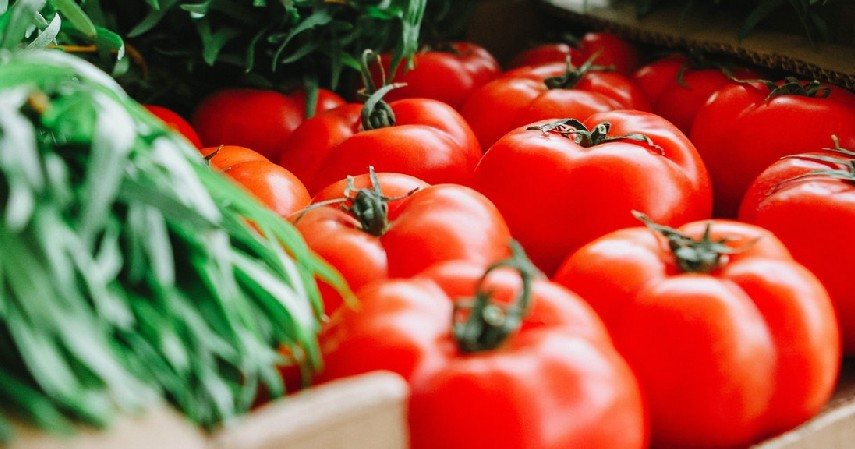 Bisnis Sayur-sayuran Segar - Bisnis yang Laku Setiap Hari