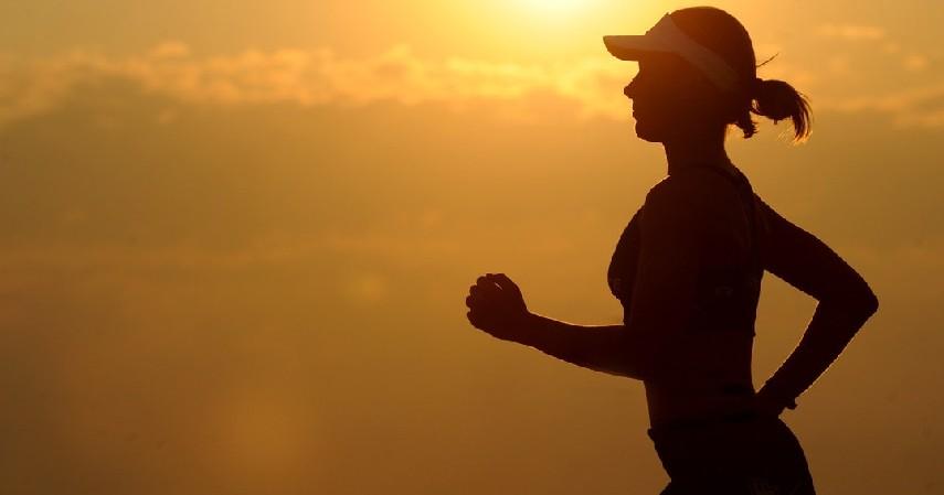 Meningkatkan imunitas tubuh - 10 Manfaat Kuaci untuk Kesehatan