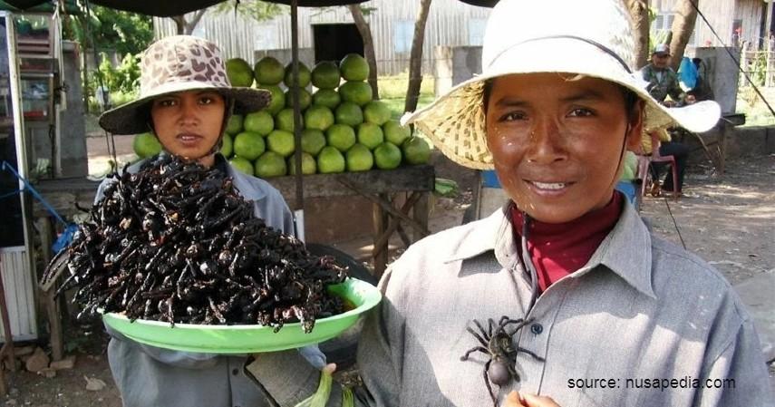 Pasar Laba-laba – Kamboja - 9 Pasar Teraneh di Dunia