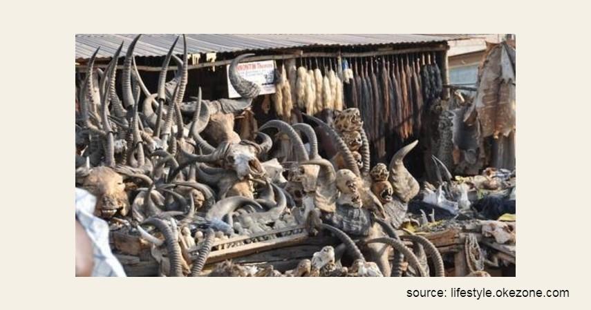Pasar Voodoo Lome – Togo - 9 Pasar Teraneh di Dunia