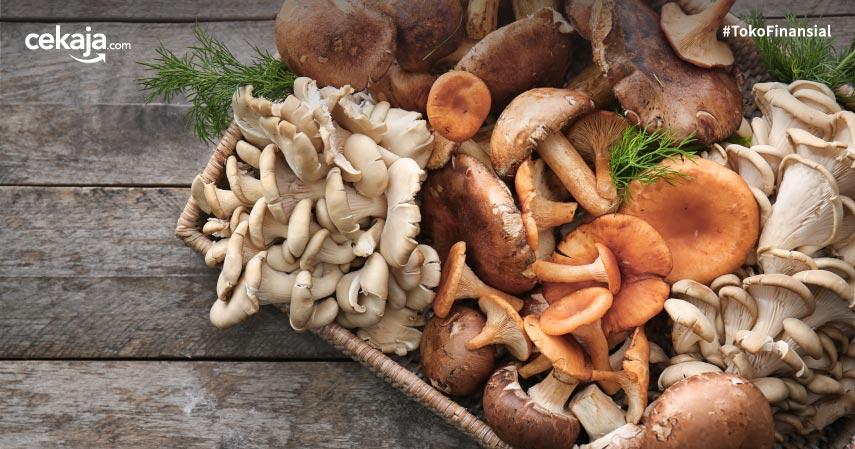 6 Jenis Jamur yang Bisa Dimakan, Aman dan Tinggi Protein