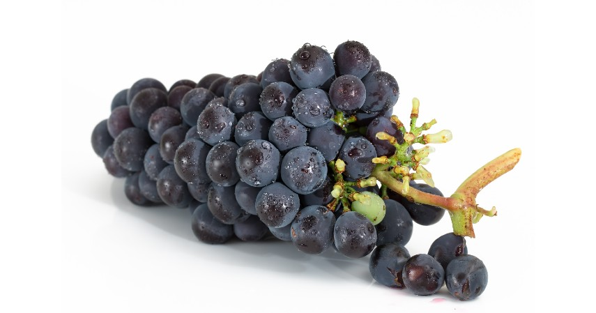 Anggur - Buah dan Sayur Tinggi Kalori