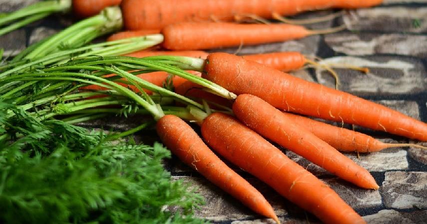Wortel - Buah dan Sayur Tinggi Kalori
