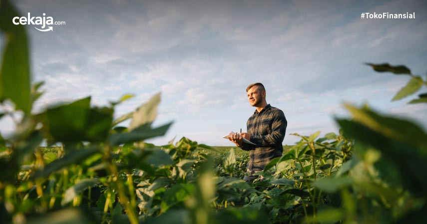 9 Peluang Usaha Pertanian, Minim Modal Hasil Maksimal