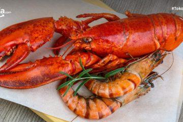 Perbedaan Udang dan Lobster Beserta Harga dan Cara Mengolahnya