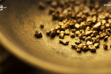 Kota Penghasil Emas Terbesar di Indonesia, Salah Satunya di Papua
