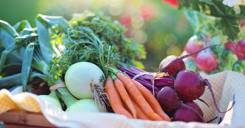 9 Peluang Usaha Pertanian, Minim Modal Hasil Maksimal - Pengepul Hasil Pertanian