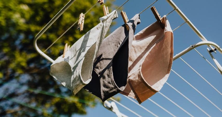 Cuci Pakaian Dalam dengan Benar - Cara Menjaga Kebersihan Miss V Yang Perlu Wanita Tahu