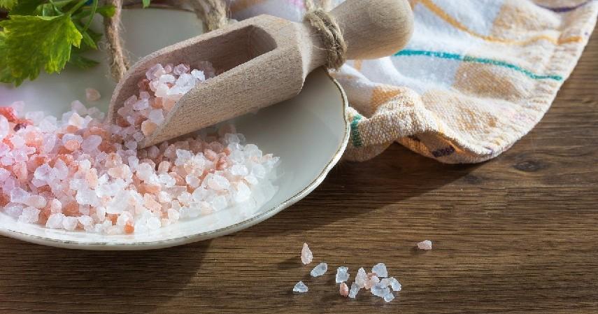 Garam laut dan Jeruk Nipis - Bahan Alami Pengganti Pasta Gigi