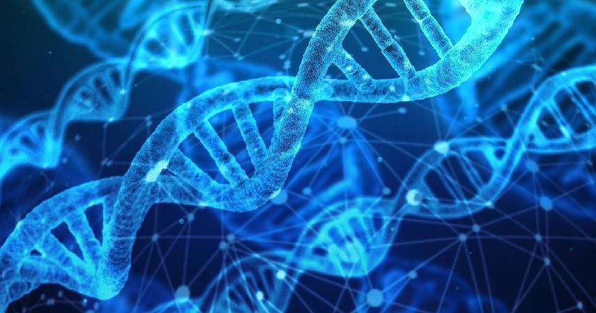 Masalah genetik - Penyebab Hidung Tak Bisa Mencium Bau