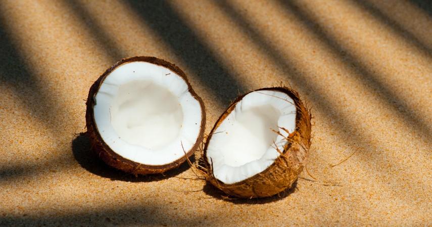 Memanfaatkan batok kelapa - 4 Cara Menjernihkan Air Kotor secara Alami