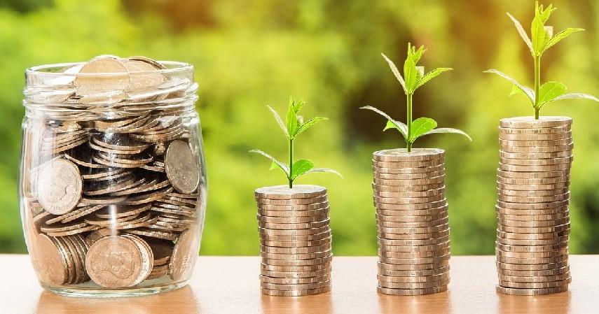 investasi - Tips Mengatur Keuangan Bagi Wanita Karier