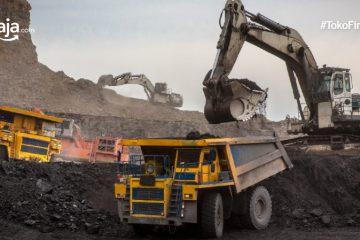 Kota Penghasil Batu Bara Terbesar di Indonesia, Paling Banyak di Sumatera