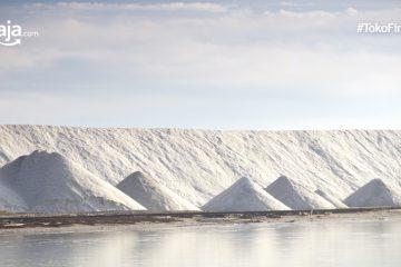 Kota Penghasil Garam Terbesar di Indonesia, Salah Satunya Madura!