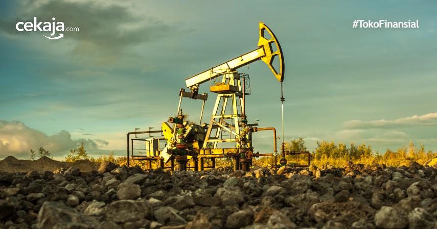 Kota Penghasil Minyak Bumi Terbesar di Indonesia, Bisa Hasilkan Ratusan Ribu Barrel per Hari
