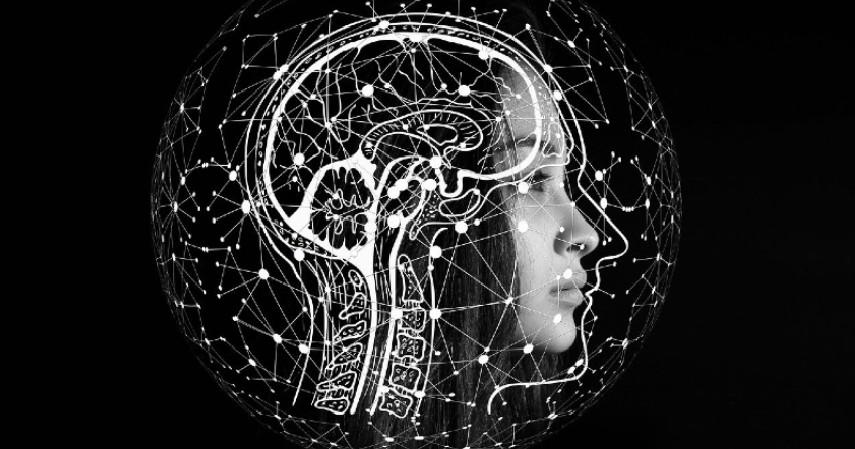 otak atau saraf - Penyebab Hidung Tak Bisa Mencium Bau