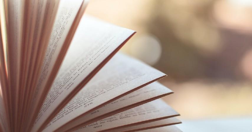 Cek kualitas buku - Peluang Bisnis Buku Bekas dengan UangTeman