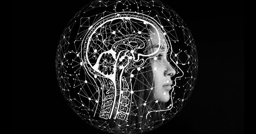 Otak - Manfaat Konsumsi Kurma saat Berbuka Puasa