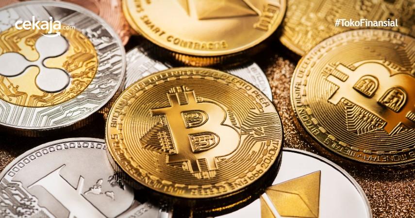 3 Perbedaan Altcoin dan Bitcoin serta Serba-serbi Kegunaannya