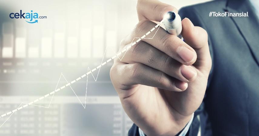 Mengenal Manajer Investasi dan Seluk Beluk Terlengkapnya