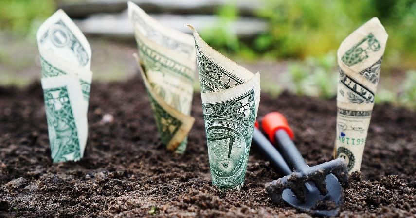 Patungan Modal - Investasi Terbaik untuk Karyawan