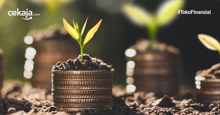 4 Modus Penipuan Investasi Saham yang Harus Diwaspadai