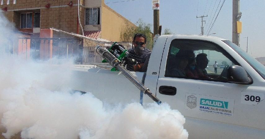 Fogging dan Fumigator - Cegah Penularan Covid-19 di Dalam Mobil