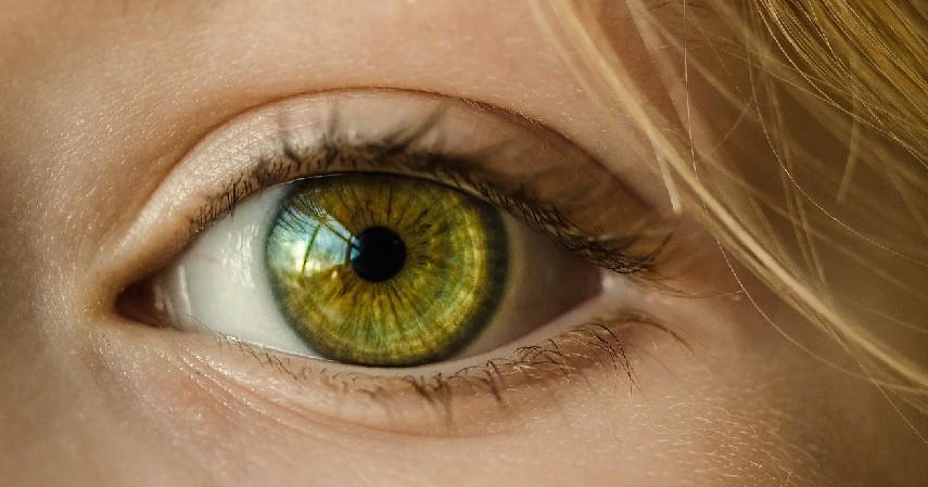 Fungsi Mata - Bahaya Infeksi Jamur