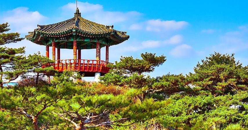 Wisata yang Gratis - Tips Liburan Hemat ke Korea Selatan