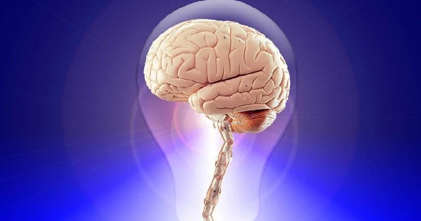 Fungsi Otak - Manfaat Minum Kopi di Pagi Hari