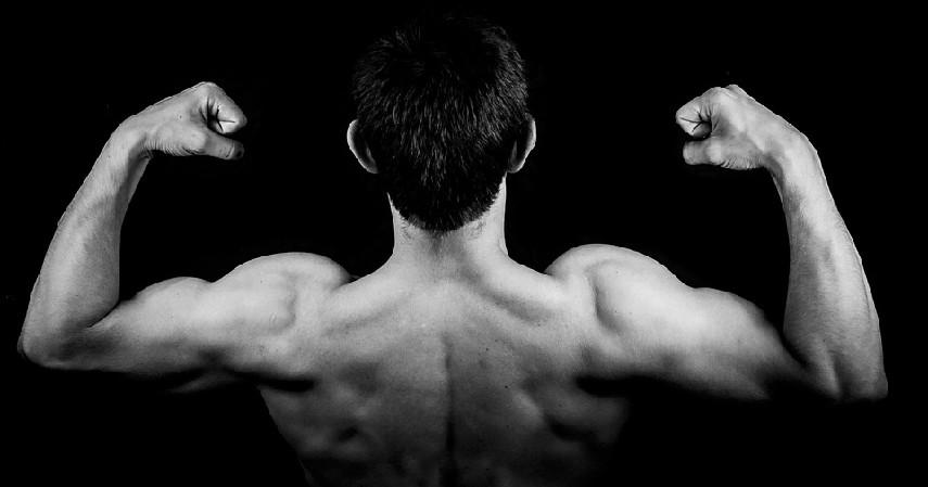 Vitalitas Pria - Manfaat Kelapa Ijo bagi Kesehatan